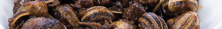 comer caracoles en Torrent
